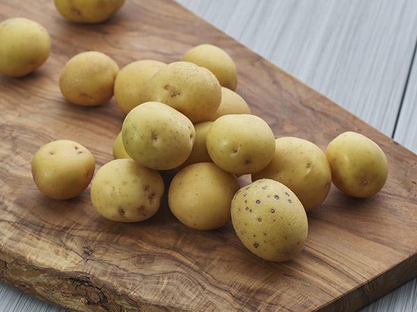 Yukon Creamer Potato