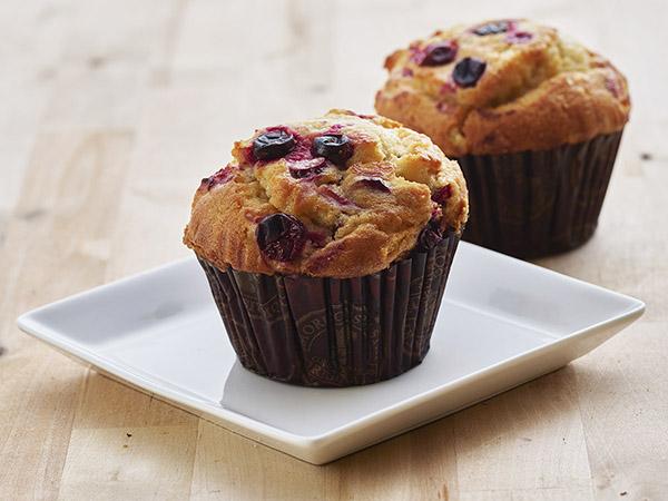 Cranberry Orange Yogurt Muffin