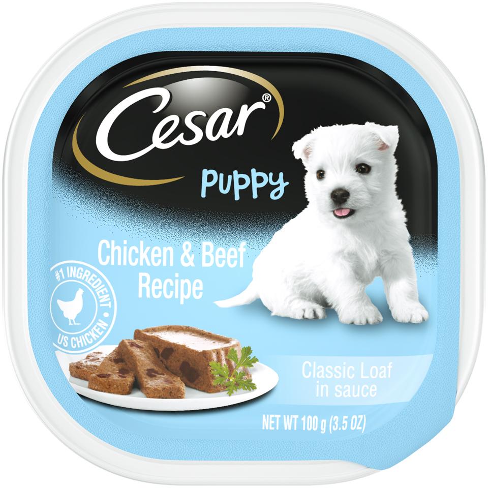 Cesar Puppy Chicken & Beef